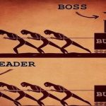 leader vs boss - copie